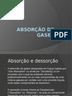Absorção de Gases