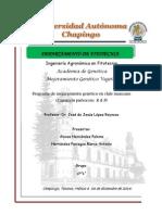 Programa de Mejoramiento en Chile Manzano - Copia