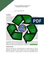 Eco Eficiencia y Producción Mas Limpia (2)