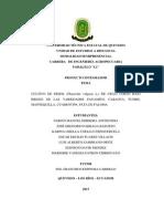 Proyecto Del Frejol