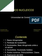 Clase 19. Acidos Nucleicos Ambiental