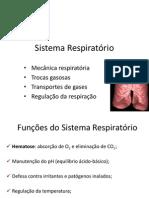 Intro Respiratorio