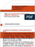 DECLARACION DE RIOppt5.pptx