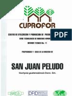 CENTRO DE UTILIZACION Y PROMOCION DE PRODUCTOS FORESTALES