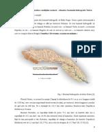 Capitolul I.pdf