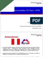 PERU EFTA
