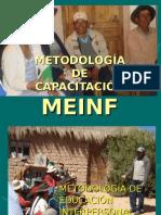 METODOLOGÍA MEINF (Proagro)
