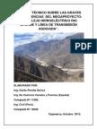 Informe Tecnico Proyectos Rio Grande I y II