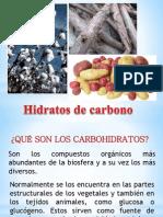 Carbohidratos y Glicobiología