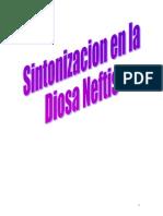 Sintonizacion en Neftis