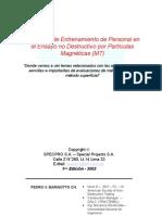 MT PARTICULAS MAGNETICAS