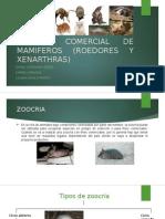 Zoocria Comercial de Mamiferos (Roedores y Xenarthras
