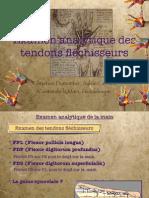 Examen Anaylitique Des Fléchisseurs 2015-2016