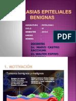 09 Lab. Patología - Neoplasias Epiteliales Benignas
