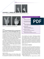 orthopedic-assessment-sample.pdf