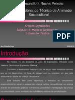 Escola Secundária Rocha Peixoto Curso Profissional De