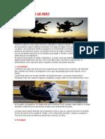 Bailes Típicos de Perú (1)