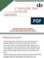 Anatomi, Fisiologi, Dan Patologi Kolon Asenden