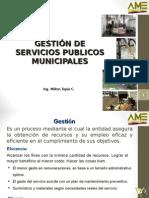 Gestion Servicios 2015