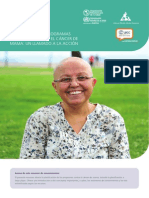 Planificacion Programas Cancer Mama