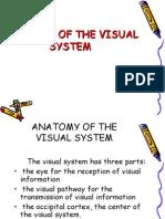 Anatomia sistemului vizualEngl Power Point Presentation