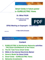 The Role of Smart Grids in Future