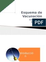 Esquema Final Vacunacion
