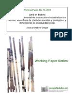 Estudio Bolivia Plan-litio