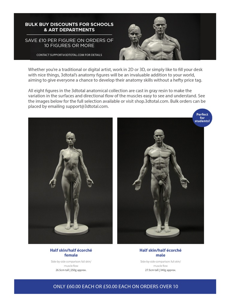 3dtotal Anatomical Collection