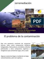 7. Bioremediacio_n.pdf