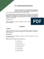 La Micro y Pequeña Empresa Mexicana (1)