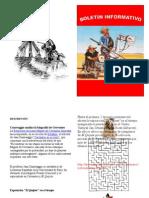 Trabajo Del Boletin(Don Quijite de La Mancha)