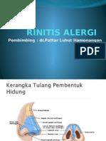 ppt rinitis