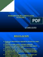 Fundamentos de La Regulacion