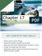 Corporate Finance Ch. 17