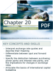 Chapter 20 Corporate Finance