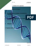 B2Acidos_nucleicos