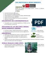 Organismos Que Protegen El Medio Ambiente