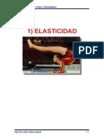 Cap_1-Elasticidad-MEJORADO-SA0301152304__24326__