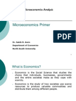 EC0 511_Lecture Notes on Basic Microeconomics