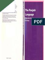 35.the Panjabi Language a Descriptive Grammar