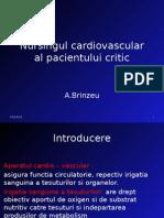64 Nursingul Cardiovascular Al Pacientului Critic