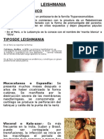 Expo de Leishmania