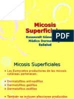 Micosis Superficiales 14