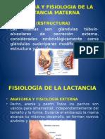 Anatomia y Fisiologia de La Lactancia Materna