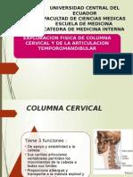 Clinica Diapos