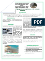 cartel quimica ambiental final ultimo.pdf