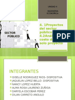 Proyectos Del Sector Público EXPO FINAL