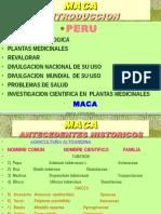 MACA[1].ppt