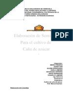 informe cultivo2